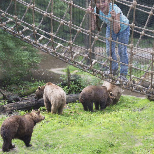Berenbos-touw-beren